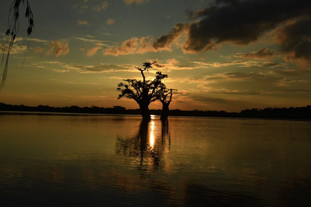 Cuyabeno 4 days and 3 nights tours in the amazon of ecuador